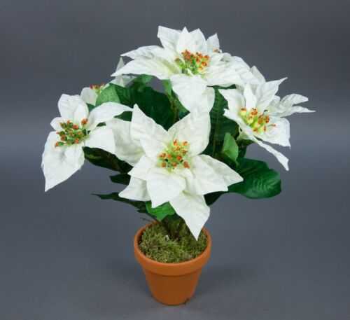 De Noël étoile 42cm Blanc en pot AR FLEURS ARTIFICIELLES ART FLEURS ART plantes