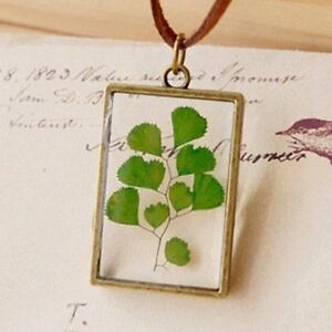 Real plant jewelry resin glass necklace botanical pressed flower real plant jewelry resin glass necklace botanical pressed mozeypictures Choice Image