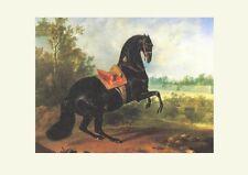 Lipizzaner Rappe GITANO Pferd Gemälde von Hamilton um 1720 K&K Faksimile 22