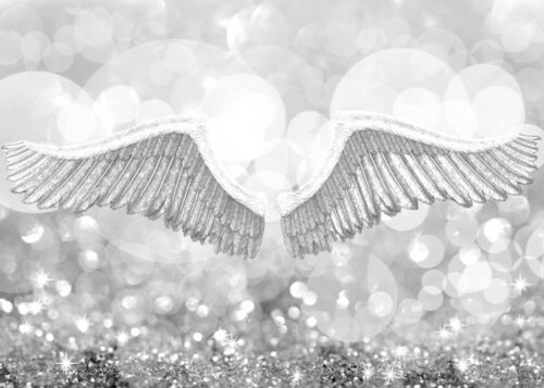 BEAUTIFUL WHITE ANGEL WINGS SILVER CANVAS PICTURE #110 FRAMED MODERN WALL ART