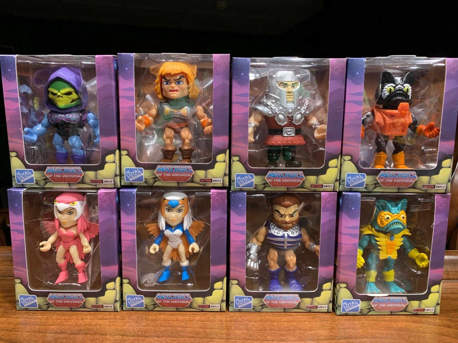 Masters of the Universe The Loyal Subjects Lot w  Chase Sorceress'