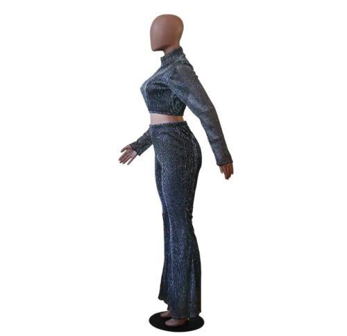 Women Sliver Silk Mesh 2 PC Set Turtleneck Long Sleeve Crop Top+Wide Leg Pant Z
