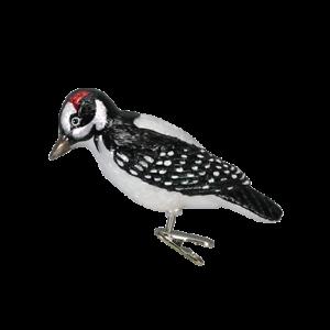 Old-World-Christmas-HAIRY-WOODPECKER-bird-clip-18028-N-Glass-Ornament-w-OWC-Box