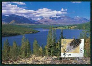 RéAliste Norvège Mk 1997 Rondane Parc National Parc Maximum Carte Mc Cm En88-afficher Le Titre D'origine