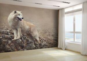 White-Wolf-at-the-Night-Wallpaper-Mural-Photo-25313471-premium-paper