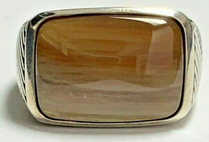 Petrified Wood and Sterling Silver Ring size 9.75 with double-layered band.