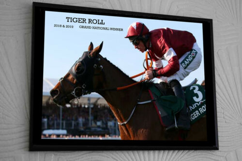 "TIGER ROLL GRAND NATIONAL 2018 & 2019 Framed Canvas Print Signed ""Great Gift"""