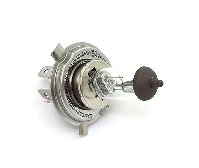 H7LL Halogen Headlight Bulb CandlePower 55 Watt 12 Volt~