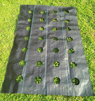 20 Year Landscape Weed Barrier Weed Barrier Block Fabric 3oz With Holes