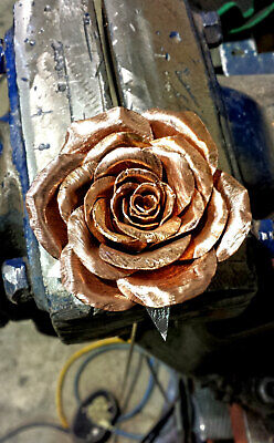 Collezione Qui Eterna Rame Rose W Messaggio Personale. Un Fiore Realizzato A Mano Intrappolati Nel Tempo-mostra Il Titolo Originale