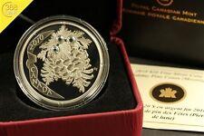 20$ Kanada Holyday Pinecones Moonlight Silber PP 2010