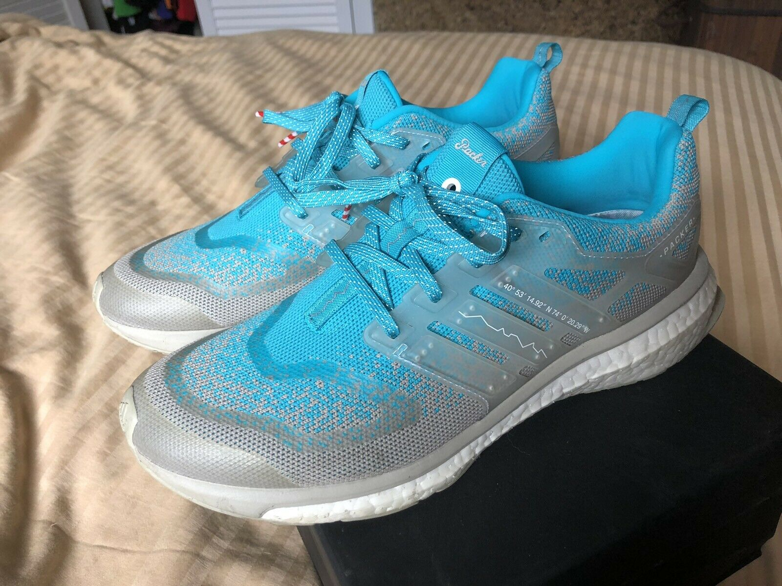 Adidas Consortium Energy Boost S.E. (Packer X Solebox)