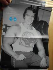 IRONMAN bodybuilding magazine/DENNIS NEWMAN/Arnold Schwarzenegger poster 3-94
