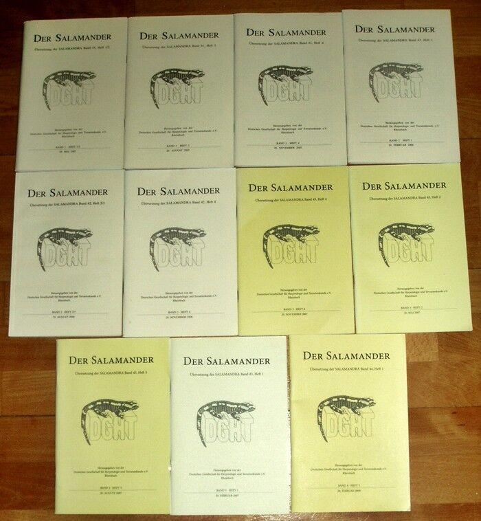 11x della Salamander traduzione salamandra DGHT Herpetologie terrari rettili