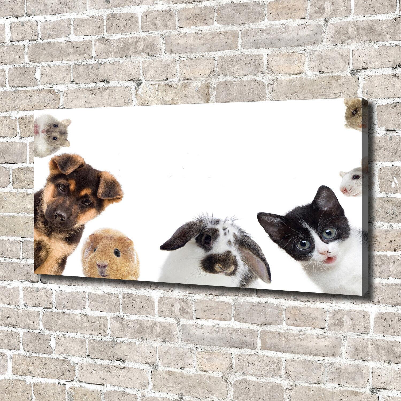 Leinwandbild Kunst-Druck 140x70 Bilder Tiere Haustiere