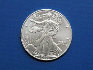 2004 Walking Liberty American Eagle Coin 1oz.Troy Ounce .999 PURE SILVER ROUND