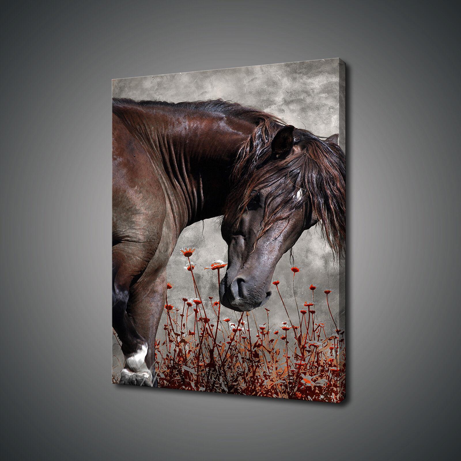 BELLISSIMO cavallo Marroneee fiori stampa tela Wall Art Picture Foto