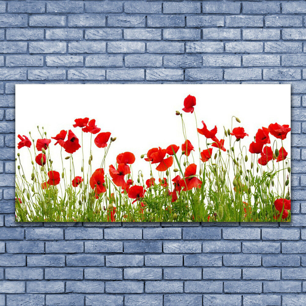 Print on Glass Wall art 140x70 Picture Image Meadow Poppies Nature