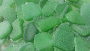 "Sea Glass - 20 Medium pieces of ""Craft Quality"" Emerald Green"