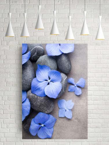 Superbe Fleur Bleu Pétales SPA Zen Stones #834 Photo sur toile Wall Art A1