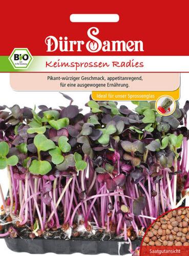 4178 Dürr BIO keimsprossen radies environ 80g épicé épicé graines seeds