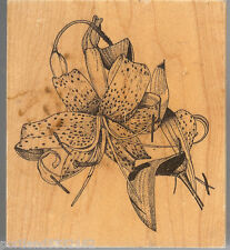 Ala Art, Rubber Stamp 885-P Botanical  Tiger Lilly  SSBD1-1