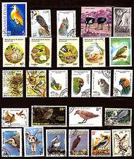 TOUS PAYS  Oiseaux : Perroquet,autruche,héron,chouette     1m422
