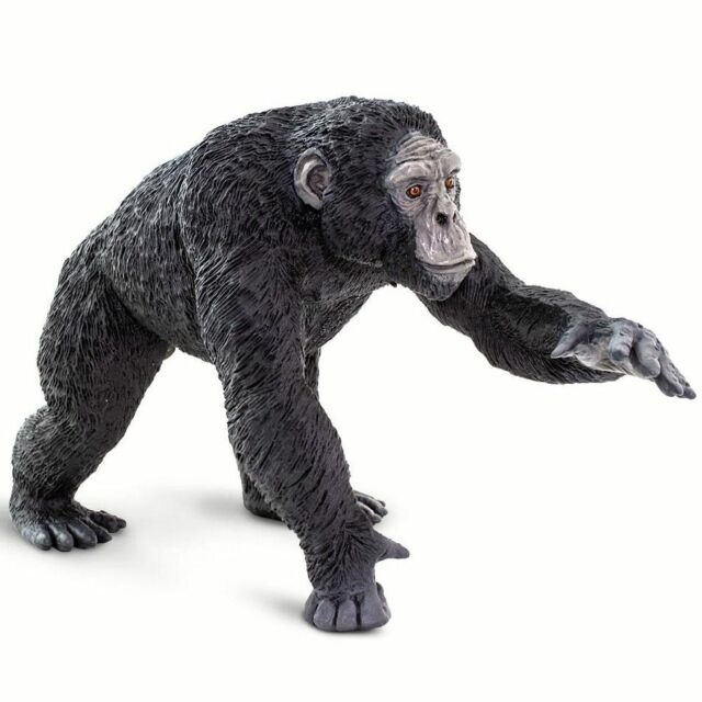Large CHIMPANZEE 100302 NEW/2019 Wildlife Wonders ~ FREE SHIP/USA w/$25+Safari