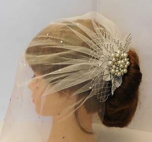 1920-039-s-birdcage-veil-w-Boho-Gatsby-Wedding-Lace-Crystal-Hair-Clip-Bridal-Blusher