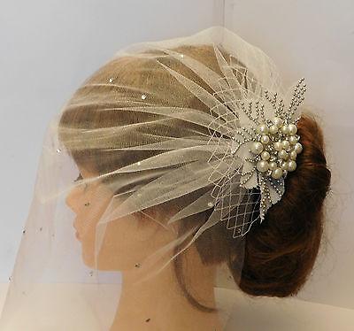 1920's birdcage veil w Boho Gatsby Wedding Lace Crystal Hair Clip Bridal Blusher