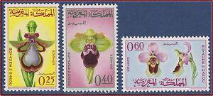 Infatigable 1965 Maroc N°494/496** Fleurs : Orchidees, 1965 Morocco Flowers Orchids Set Mnh Ventes Bon Marché