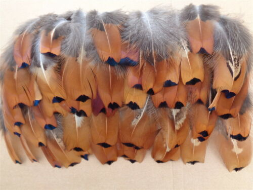 """Jewellery Crafting 100 Cock Pheasant Flank Feathers 2/"""" to 5/"""" Fly Tying"""