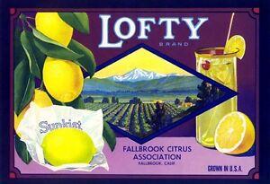 Santa Paula Paula Lemon Sunkist Citrus Fruit Crate Label Art Print