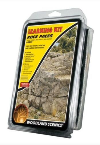 Woodland Scenics Rock Making Learning Kit LK951