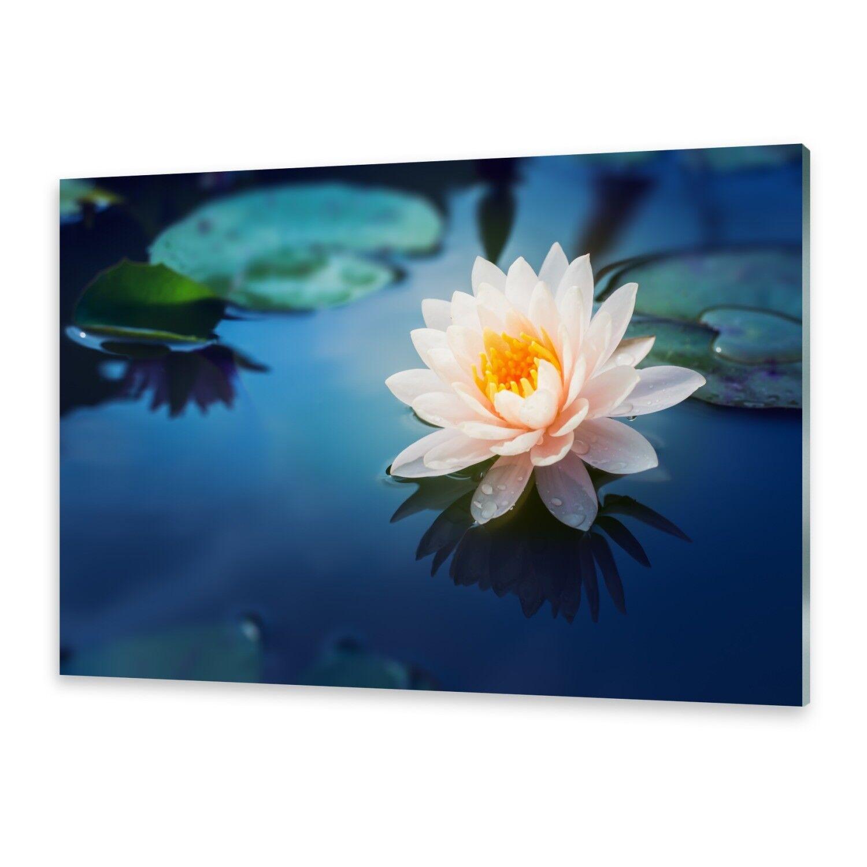 Acrylglasbilder Wandbild aus Plexiglas® Bild Lotus Blaume