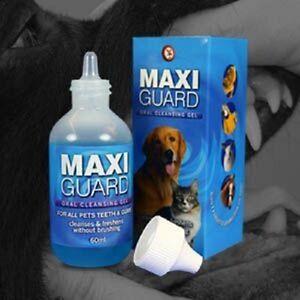 Maxiguard-Oral-Cleansing-Gel-60ml-Premium-Service-Fast-Dispatch