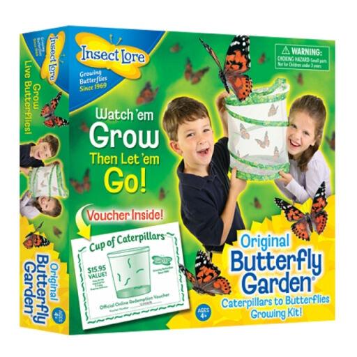 Die insekten leben butterfly garden  wissenschaft bildungs - spielzeug - kit