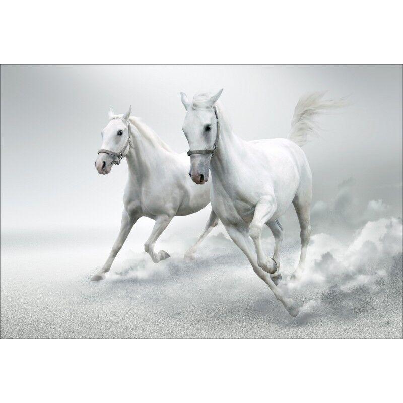 Wandaufkleber Deko  Pferde Weiß 1442