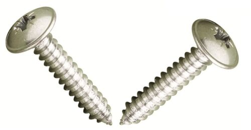 """8G X 1 1//4/"""" Pozi Flange Posi Mushroom Washer Face Self Tappers Stainless 25 pack"""
