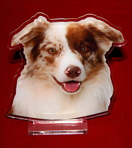 statuette-photosculptee-10x15-cm-chien-border-collie-12a-dog-hund-perro-cane
