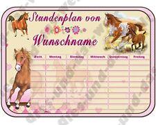 ✿ Pony / Pferde STUNDENPLAN  f. Mädchen Din  A4  ✿ Schule Einschulung Neu + NAME