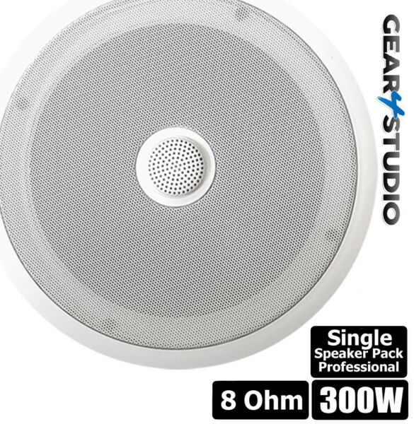 Home Or Retail Showroom Pro Ceiling Speaker Hi-fi 300 Watt Bass & Treble 8 Ohm Voorzichtige Berekening En Strikte Budgettering