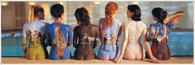 New Back Catalogue Campaign Pink Floyd Panoramic Poster