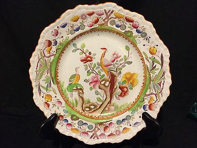 "BEAUTIFUL 10 5/8"" ANTIQUE MASONS HAND PAINTED / TRANSFERWARE PEACOCK BIRD PLATE"