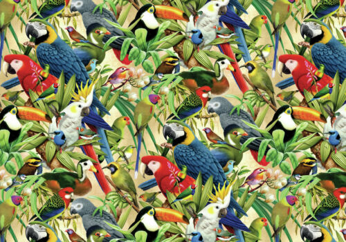 Modern Art wall Home decor Tropical bird pictures painting Printed on canvas