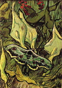 Art Oil Painting Vincent Van Gogh Death S Head Moth With Plants