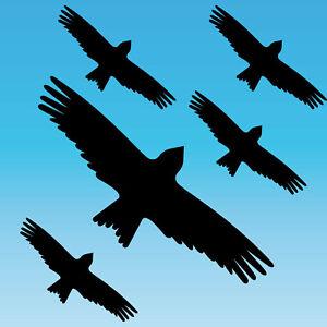 Autocollants-Set-S-Noir-Milan-Oiseau-Peur-Fenetre-Protection-Deco-Film