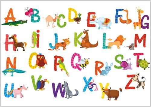 Alphabet A-Z of Animals Educational Large CANVAS Art Print A0 A1 A2 A3 A4