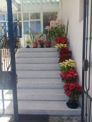Venta casa destino turístico Zacatlán, Pue. México