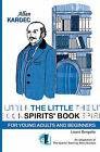 The Little Spirit's Book: For Young Adult and Beginners by Laura Bergallo (Paperback / softback, 2010)